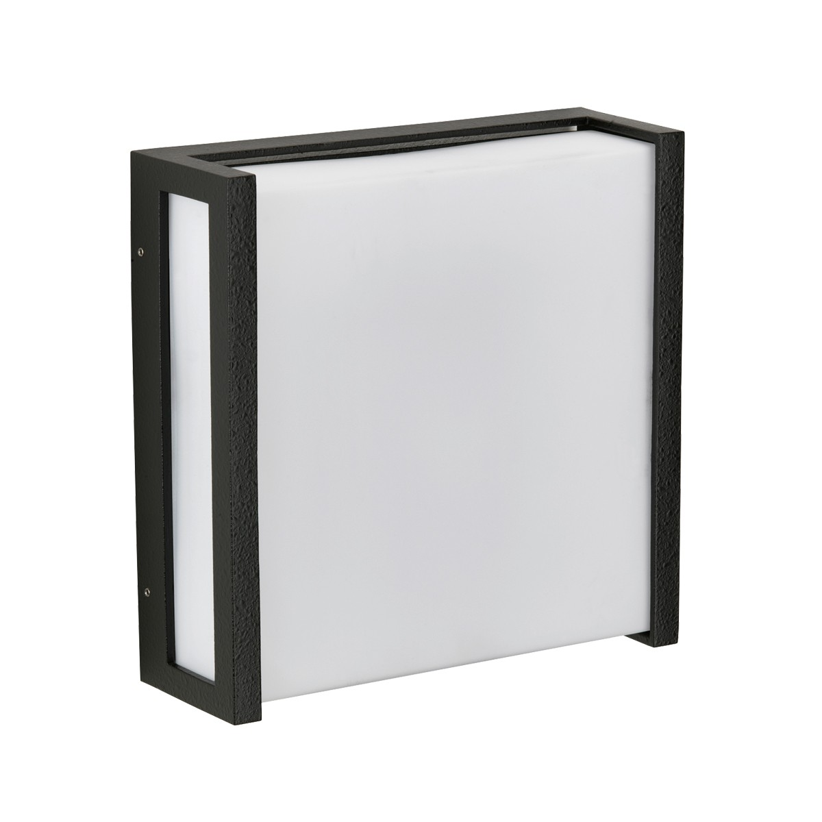 Albert 6401 Wand- / Deckenleuchte, schwarz